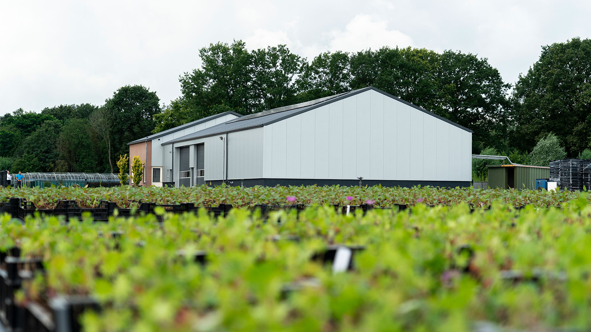De-Meijer-Staalbouw-De-Noordhoek-Vaste-Planten-BV-schijf-4