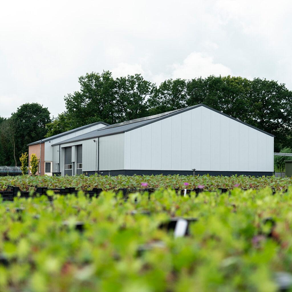 De-Meijer-Staalbouw-De-Noordhoek-Vaste-Planten-BV-schijf-tumb
